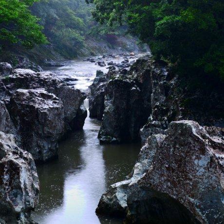 Nơi hoang dã của Nakatsu
