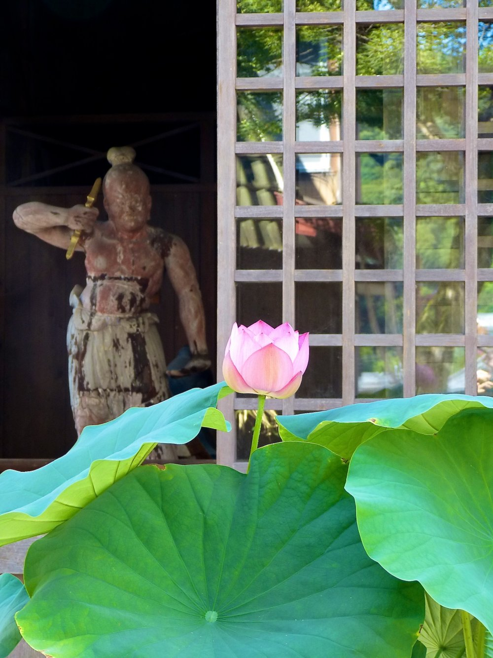 Lotus flower and a guardian statue