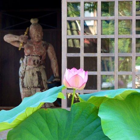 Храм Сюдзэн-дзи Сигэцу-дэн