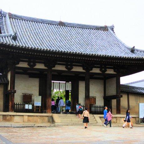 Horyu-ji Temple, Nara