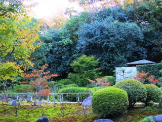 The nice scenery of the temple grounds