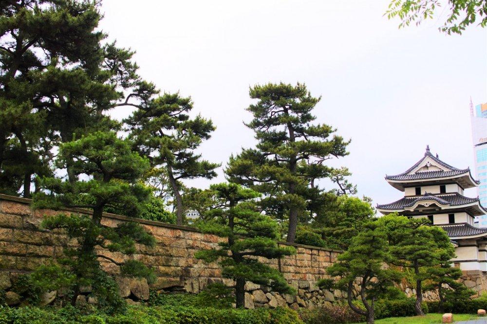 The scenery of Tamamo Park