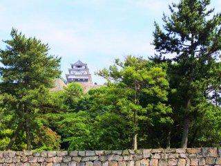 The scenery of Marukame Castle