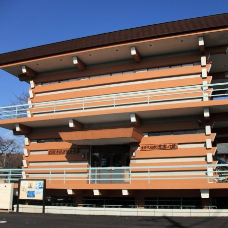 Tokyo's Important Cultural Property - Old Documents