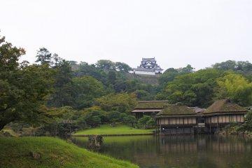 Genkyuen Garden at Hikone Castle