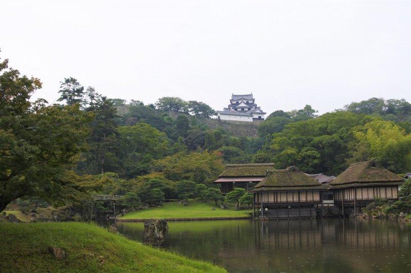 Hikone castle and Rinchikaku