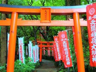 Torii gates of Tenkai Inari Daimyojin Shrine