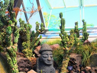The scenery of the greenhouse area