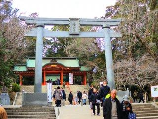 The Torii of Katori Jingu Shrine