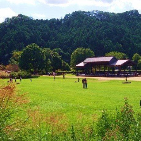 國營飛鳥歷史公園