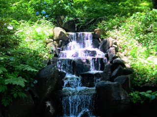 The white lily waterfall