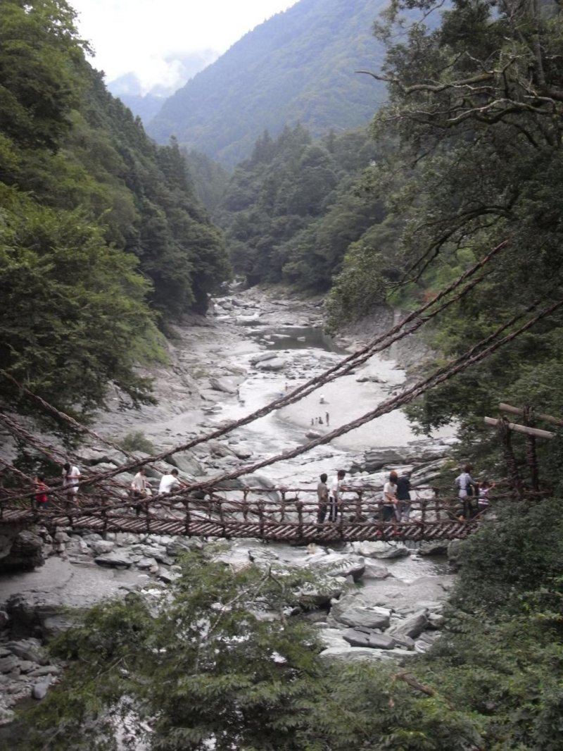<p>Kazura Vine Bridge</p>