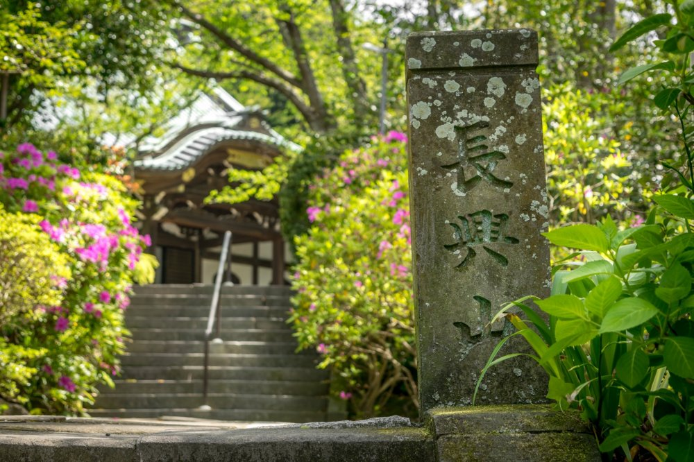 Situated at the top of a steep slope, Myohonji Temple is a vast complex boasting several large buildings