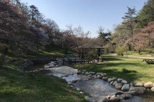 Первомайский день в парке