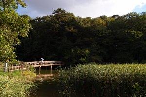 Sanpoji Pond, Nerima Ward