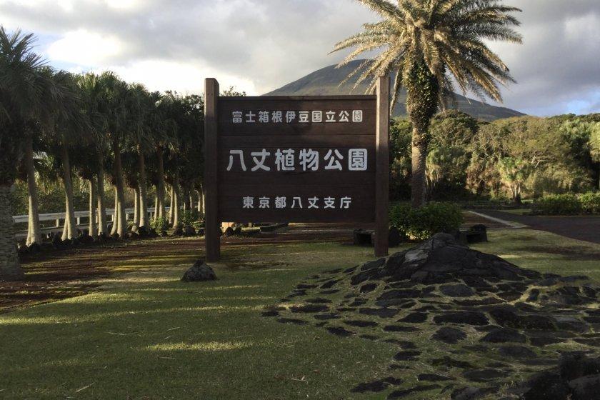 The garden below Hachijo Fuji Mountain