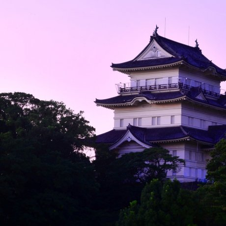 Visiting Odawara Castle
