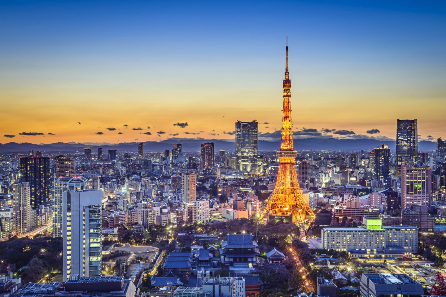 Tokyo Tower and skyline, Tokyo