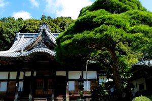 O Templo Shuzen-ji é encantador e acolhedor