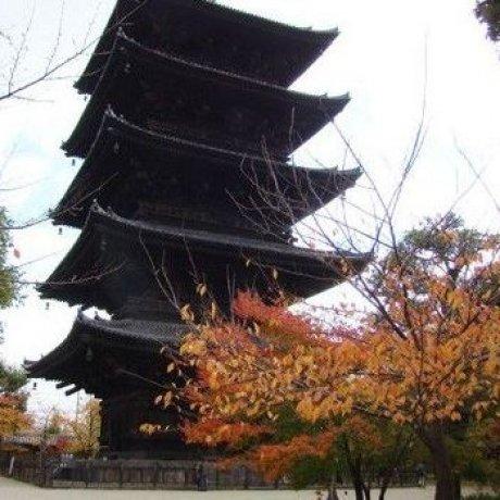 红叶掩映着五重塔