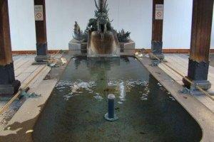 龙喷圣水,日本很少见