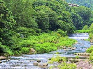 早川の景色