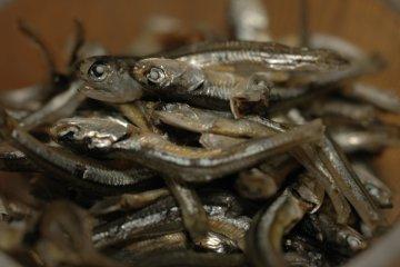 Iriko dried sardines