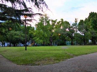 自然豊かな八幡山公園