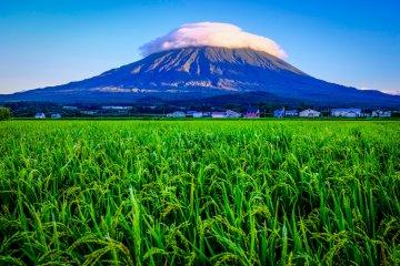 Le Mont Yōtei