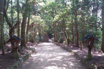 Approaching Chihaya Shrine