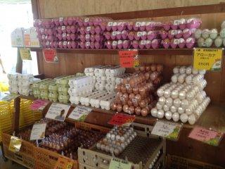 Berbagai jenis dan ukuran telur