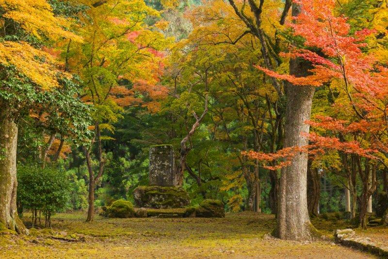 Территория храма Когэндзи - потрясающий пейзаж куда ни глянь