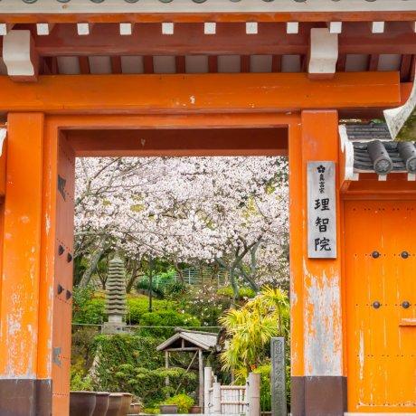 Храм Ритиин и статуя Тоётоми Хидэёси