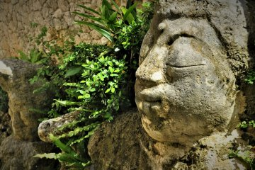 The ancient wisdom of our founding families are lovingly nurtured on the east coast of Okinawa.