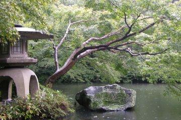 Minato City Ward - Parks & Gardens