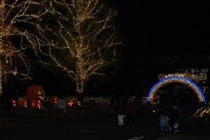 Halloween illumination in Shinrin Park