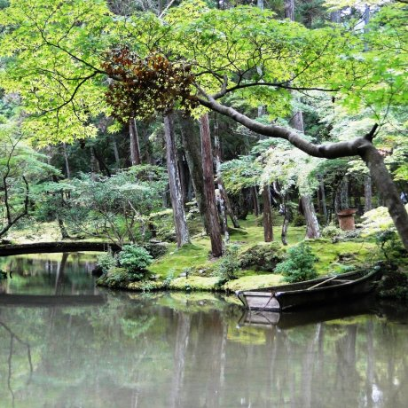 The Moss Garden at Saihoji Temple