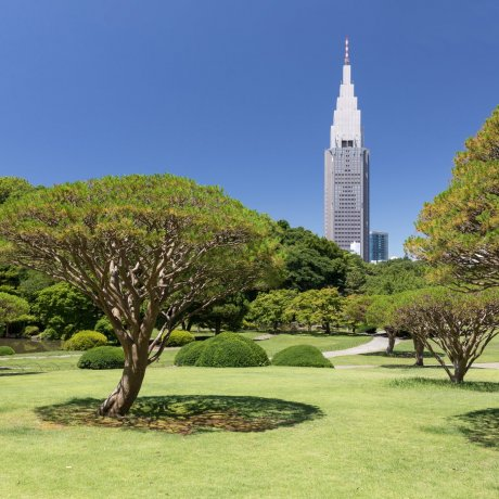 Shinjuku City Ward - Parks & Gardens