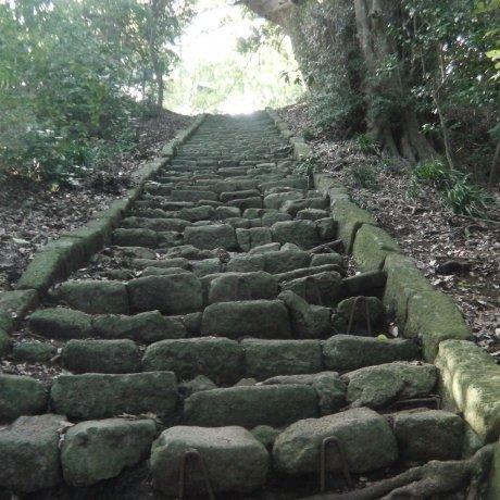 เส้นทางเดินป่าโอะอิโซะ