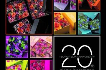 Nicolai Bergmann's Flower Box Exhibition