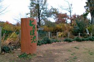 Maehara Park (light adjusted)