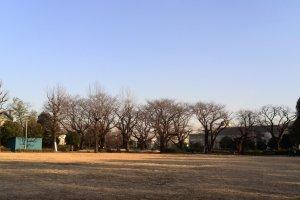 Bunridai Park