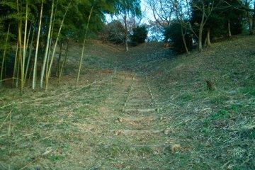 Oyamada Ryokuchi Park
