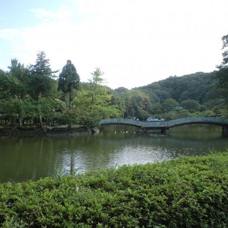 Machida City - Parks & Gardens