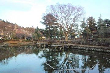 Mizuho Town - Parks & Gardens