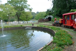 Swan pond and little red train. Choo-choo!