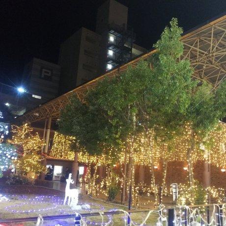 12月、山口市はクリスマス市になる