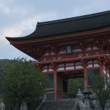Kiyomizu at Dawn