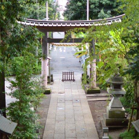 Higashikurume City - Temples & Shrines