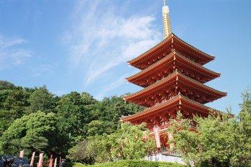 Hino City - Temples & Shrines